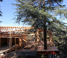 House in Trees &#8211; framing